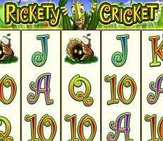 Rickety Cricket